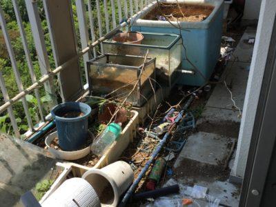 ベランダにある植木類などの不用品回収